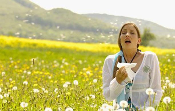 Поллиноз: рецепты народной медицины