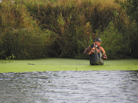 ловля на течение на мелководье
