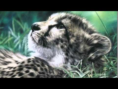 Животные сошедшие с полотна