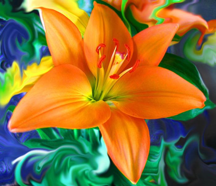 Легенды о цветах: Лилии (699x602, 141Kb)