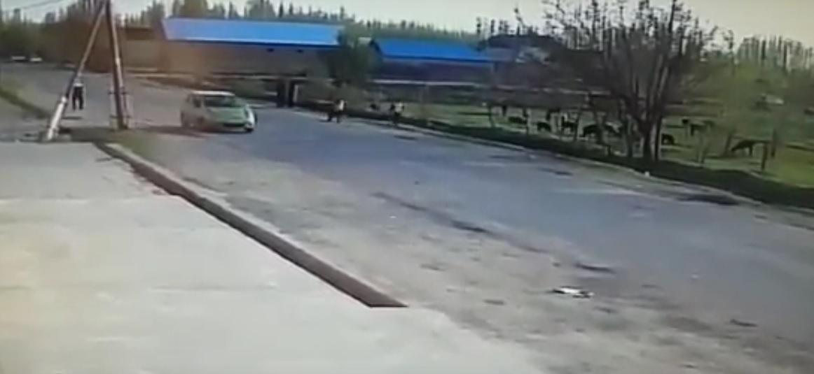 Киргизия,аул,игрища...
