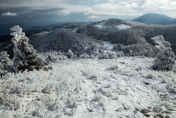 Сильные ветры и снегопады превратили Яворник в снежное королевство ветер, красота, снег