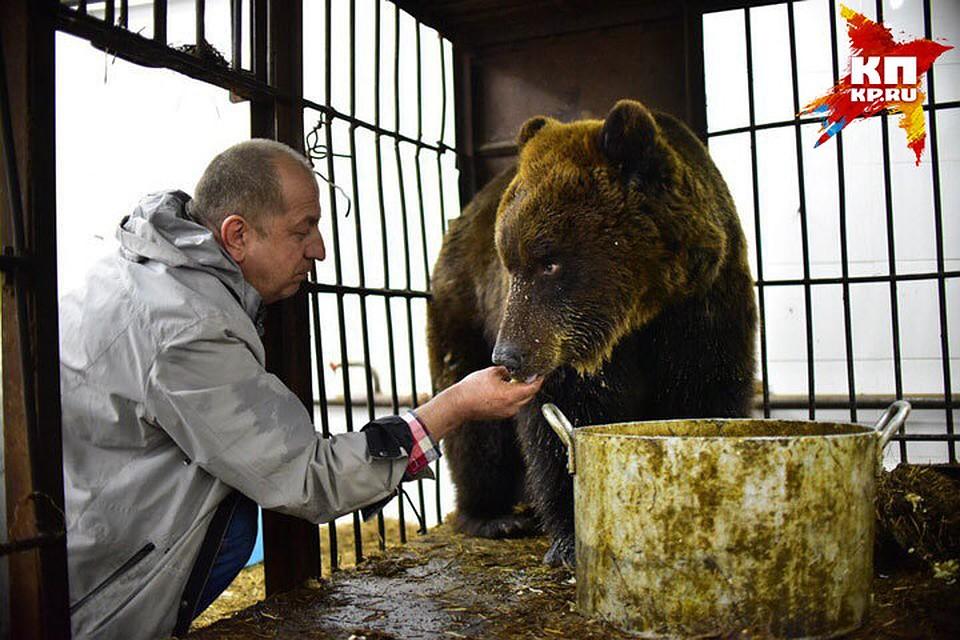 Анатолий Кожанов Марусю любит, кормит с рук