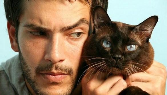 Котики и мужчины