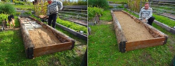 Обработать огород от сорняков