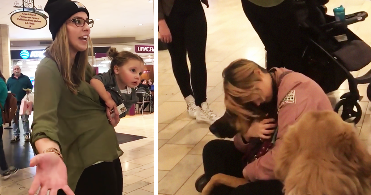 This Mom Lost It When Her Request To Let Her Daughter Pet Service Dogs Got Refused