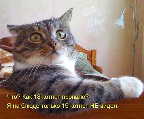 Бреется сволочь…))