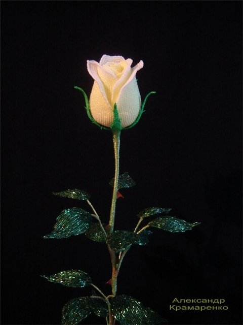 Французские розы из бисера от Александра Крамаренко (2) (480x640, 94Kb)