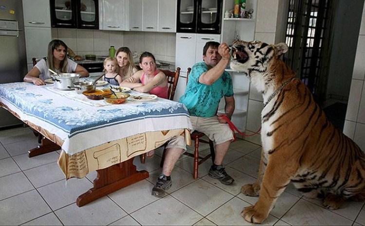 Фото людей в домашних условиях