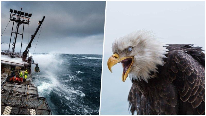 Кори Арнольд — матрос-фотограф из Аляски