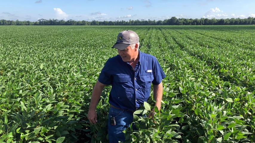 Торговая война подкосила американских фермеров