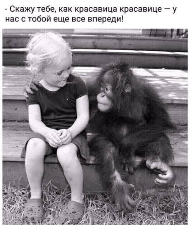 Блог Павла Аксенова. Анекдоты от Пафнутия. Фото luislouro - Depositphotos