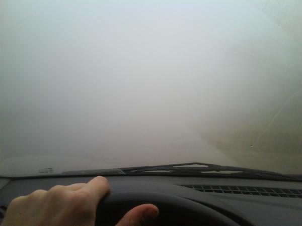 Правила безопасной езды в туман