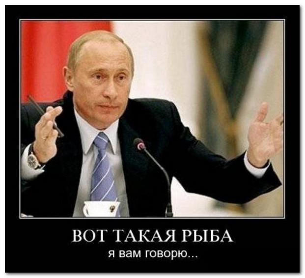 Сидят на рыбалке Путин и Порошенко...