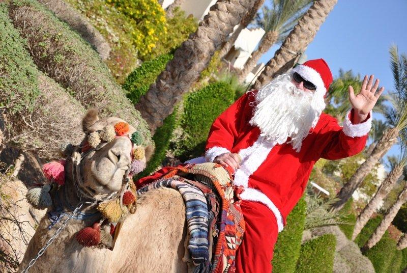 Тунис интересное, новый год, снег