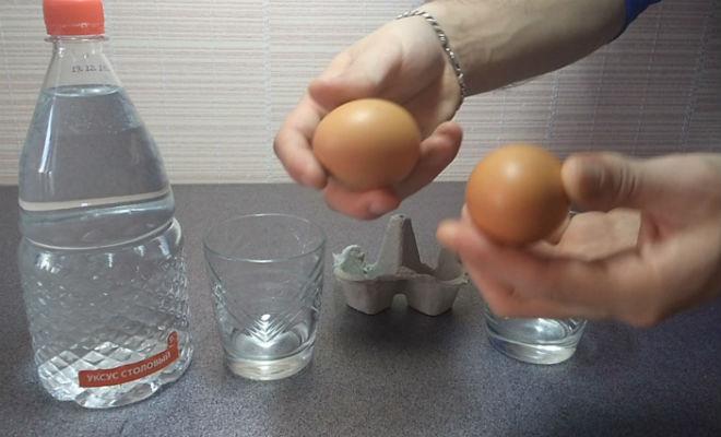 Что будет, если опустить яйцо в уксус