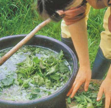 Накормим овощи... травой