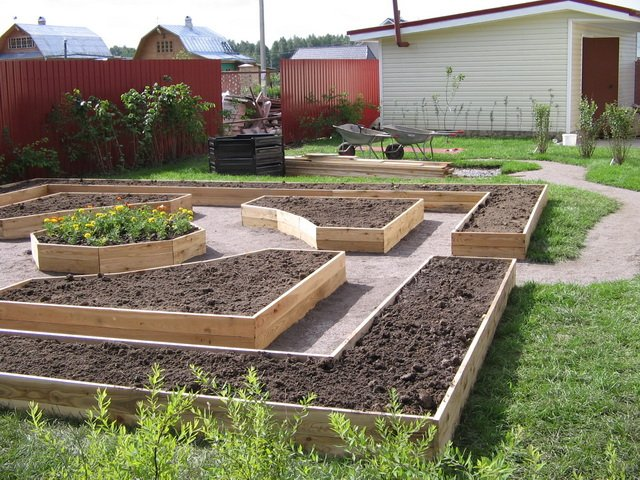 Красивые идеи для огорода фото