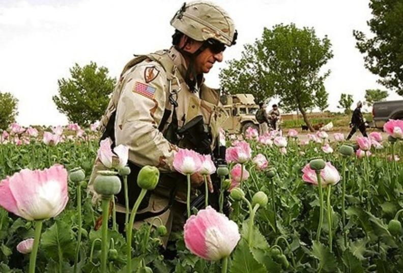 «Несокрушимая безнадега»: афганская партизанщина, наркота и НАТО