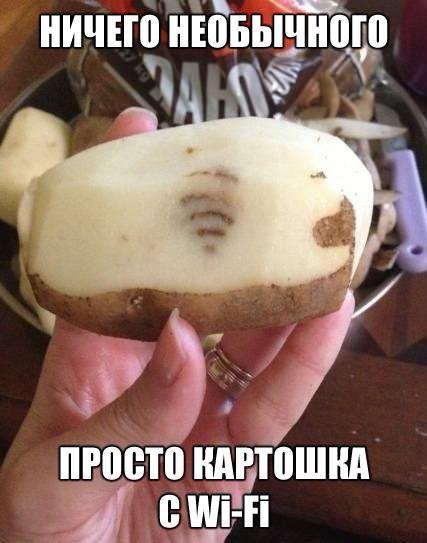 ЮМОР О БЕЛОРУСАХ И ОТ БЕЛОРУСОВ)