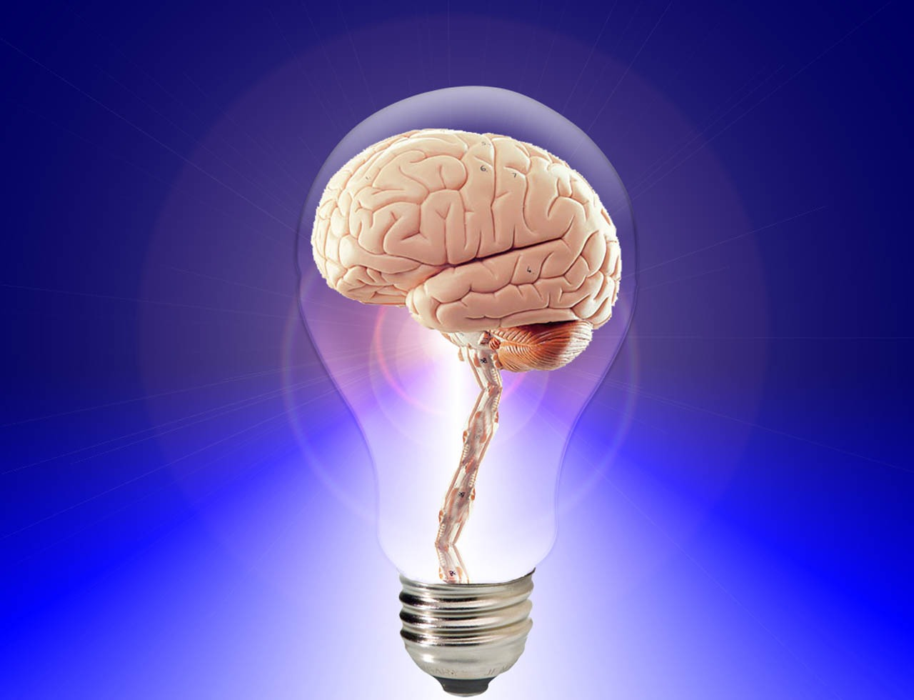 Как очистить мозг и улучшить память?