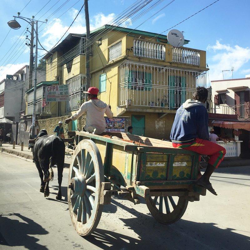 В городе до сих можно встретить гужевой транспорт Антананариву, африка, беднейшие страны, города Мадагаскара, мадагаскар, путешествие, столица Мадагаскара, столицы