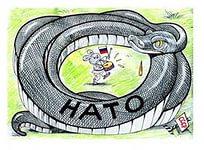 МИД РФ: НАТО не способна осознать ошибочность своей политики