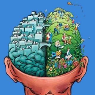 """Как развивать полушария мозга?  Вот все привыкли к тому, что нужно развивать память, внимание, интеллект, тело своё совершенствовать. Но почему-то при этом мало кто обращает внимание на сам мозг, от которого развитие всего этого в большинстве случаев и зависит. Даже тело развиваться и совершенствоваться не будет, если перед этим мозг хорошенько не настроится и не обдумает, как подступиться к работе над телом.  Всем хорошо известно, что мозг состоит из двух частей: левой и правой. Занимаются они разными делами. И при этом у кого-то функционирует лучше левая часть, у кого-то правая, а у самых счастливых обе. Выигрывают, естественно, последние, использующие своё богатство максимально.   Левое полушарие мыслит логически. Правое помогает создавать новое, генерировать идеи, как это сейчас модно говорить. Однако можно быть математиком с хорошо развитым левым полушарием и при этом ничего нового не выдумать. А можно быть творцом и сыпать идеи налево и направо и ни одну из них не реализовать из-за непоследовательности и нелогичности своих действий. Такие люди тоже встречаются. И не хватает им только одного: работы над совершенствованием своего мозга, приведения его в гармоничное состояние.  А тем временем психофизиологи уже давно разработали систему упражнений для этого. Хорошо в этом отношении музыкантам, например, пианистам. Их с раннего детства уже делали гармоничными. Ведь самый главный инструмент для развития мозга - это руки. Действуя двумя руками, человек развивает оба полушария.  Итак, перейдём к упражнениям. Многие из них нам хорошо известны с детства.   1. """"Ухо-нос"""". Левой рукой берёмся за кончик носа, а правой - за противоположное ухо, т.е. левое. Одновременно отпустите ухо и нос, хлопните в ладоши, поменяйте положение рук """"с точностью до наоборот"""". Я пробовала, в детстве получалось лучше.  2. """"Зеркальное рисование"""". Положите на стол чистый лист бумаги, возьмите по карандашу. Рисуйте одновременно обеими руками зеркально-симметричные рисунки, буквы. При выполнении э"""