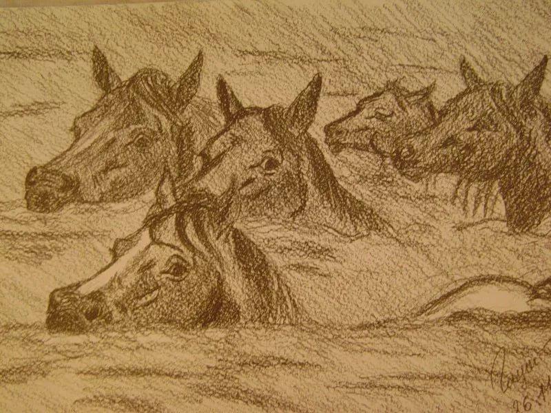 """Рок-острова """"Рыжий остров"""" (Лошади в океане)"""