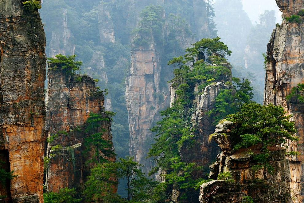 Путешествие в национальный лесной парк Чжанцзяцзе