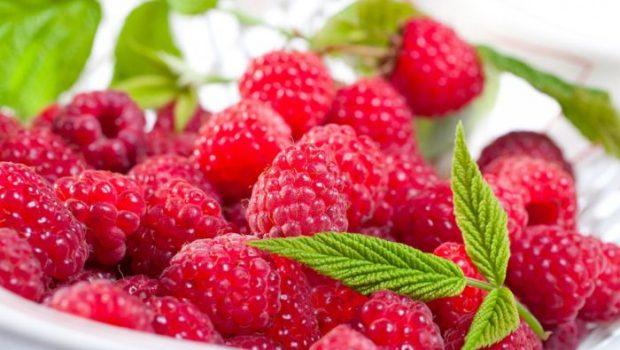 Польза малины для здоровья организма
