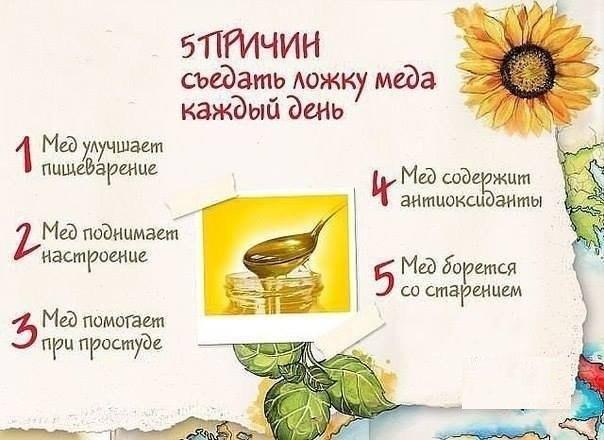 5 причин съедать ложку мёда каждый день!