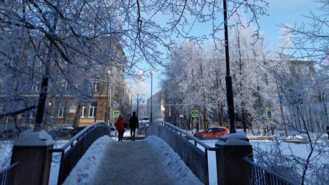 Синоптики обещают аномально холодную зиму в Санкт-Петербурге