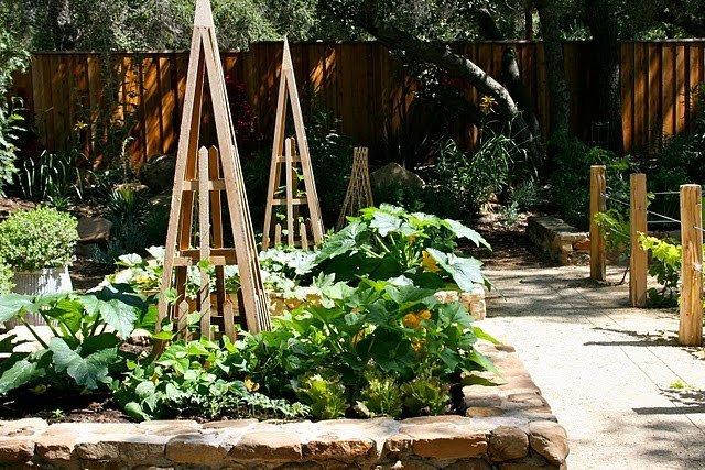 Идеи для красивого огорода фото