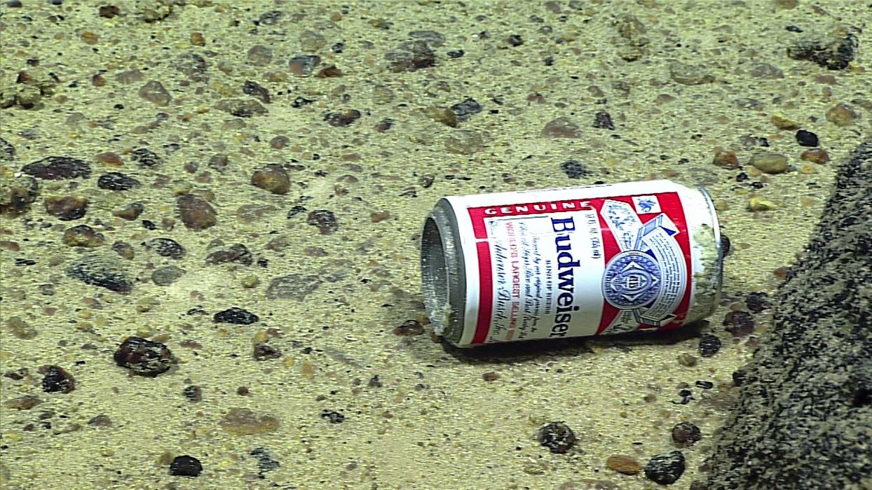 Человек оставил свой след даже в самом глубоком месте планеты - на дне Марианской впадины!