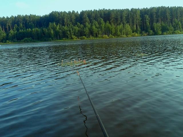 Интересный способ ловли рыбы — на кивок с мормышкой