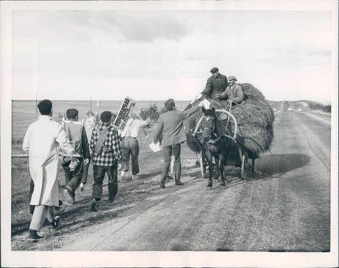 Крестьянская реформа, 1961 год.