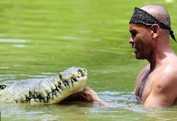 Дружба с крокодилом (6 фото)