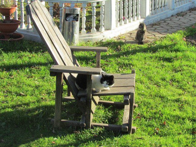 Мастерим кресло для дачи