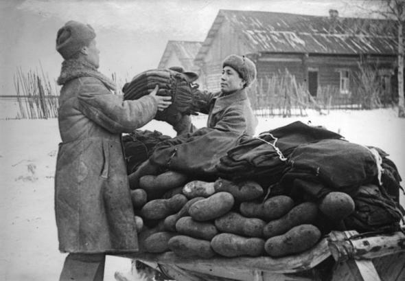 Деморализующие цифры о Великой Отечественной Войне