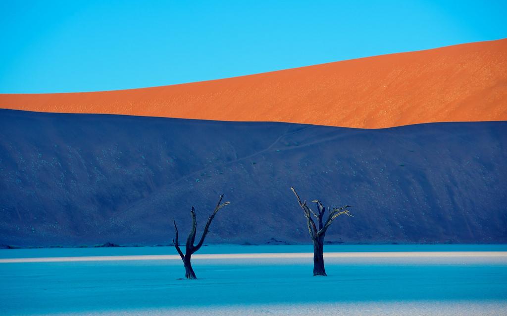13 фото доказывающих, что природа — гениальный художник