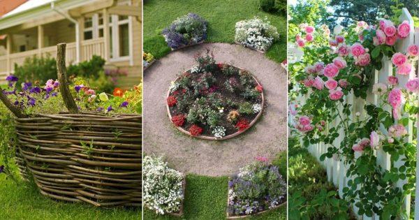 Позаимствовала идеи у голландских садоводов: шикарный цветник на придомовой территории
