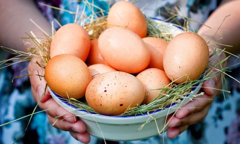 Ученые назвали 7 главных преимуществ для здоровья от регулярного употребления яиц