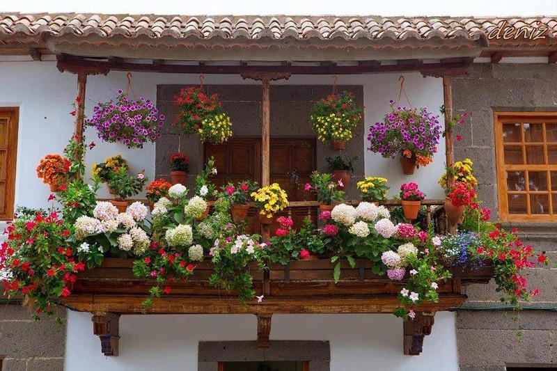 Клумба на балконе своими руками