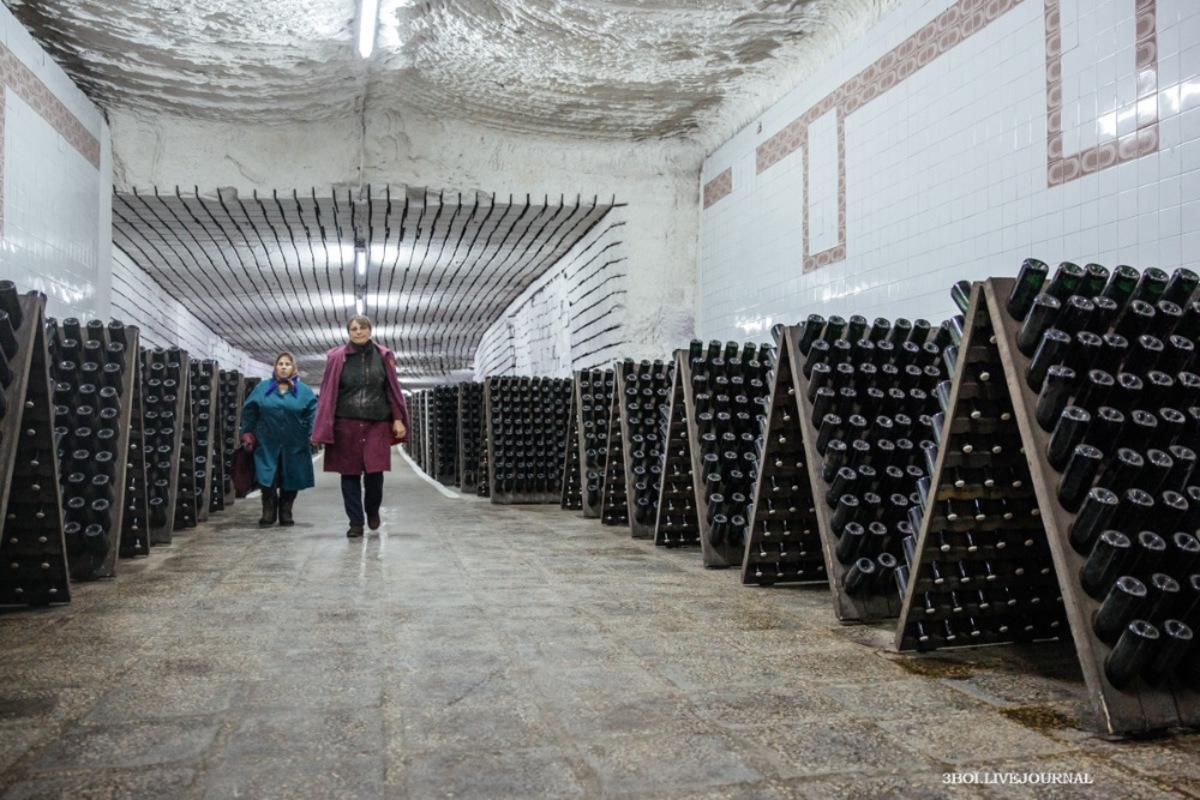 Сто двадцать километров вина