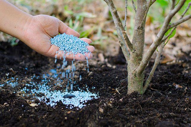Полезные штучки. Что такое «долгие» удобрения и гидрогель?