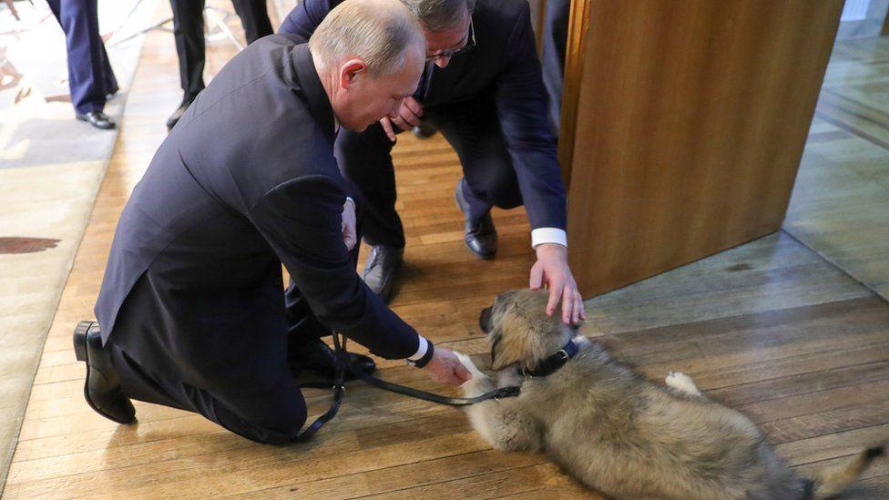 Президент Сербии подарил Пут…