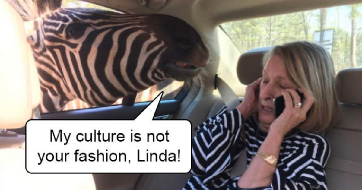 """22 Of The Best Reactions To """"My Culture Is Not Your Goddamn Prom Dress"""" Drama"""