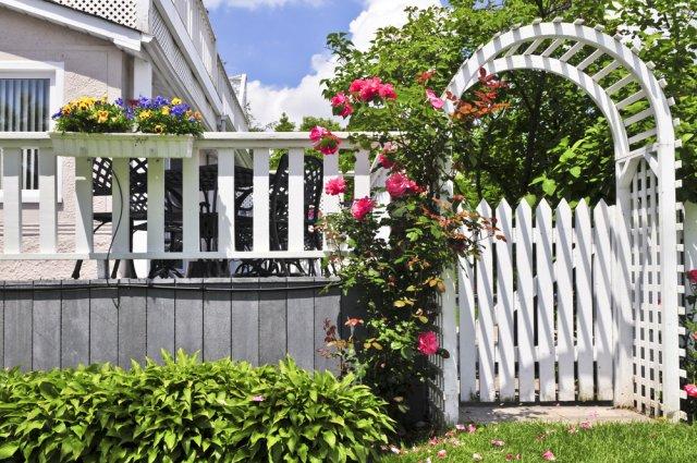 пергола с забором