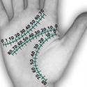 Гороскоп для всех знаков зодиака 2012